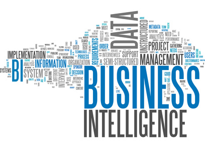 Business Intelligence and Financial and Operational Performance Management