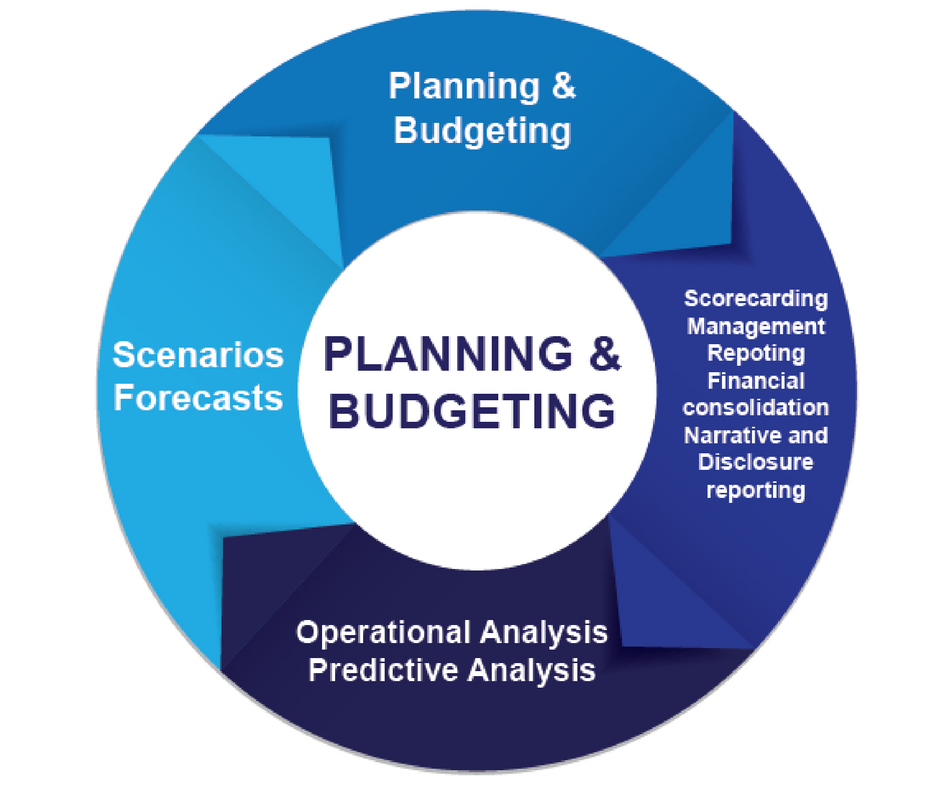Cortell Financial Performance Management Cycle FPM in Organisations